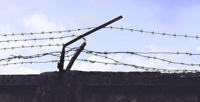 Οι φυλακές έχουν καταντήσει ξέφραγα αμπέλια.