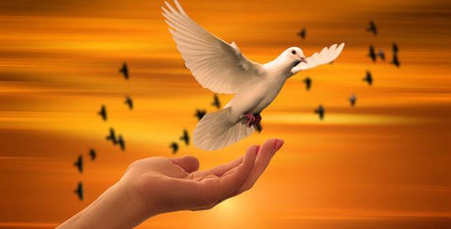 Τίμησε τον Θεό δείχνοντας αγάπη και ευγνωμοσύνη