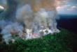 Αμαζόνιος – Ο «πνεύμονας» του πλανήτη κινδυνεύει