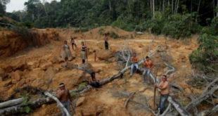 Αμαζόνιος: Ενεργοποίηση των κρατικών αρχών για τις πυρκαγιές