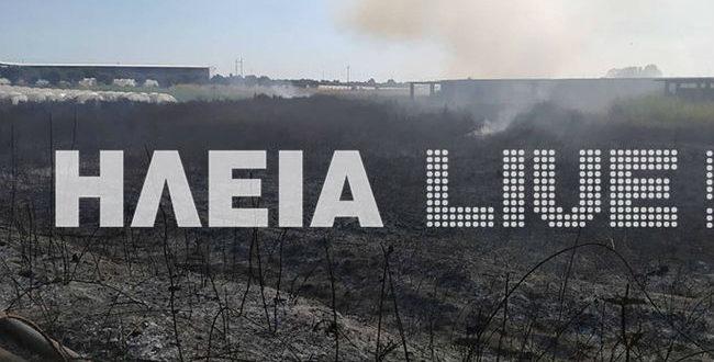 Φωτιά ΤΩΡΑ στη Νέα Μανωλάδα - Κλειστή η εθνική οδός Πατρών - Πύργου