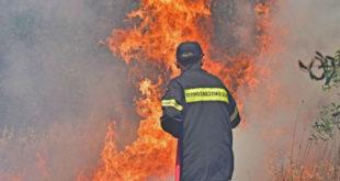 Φωτιά: Βάρδα Ηλείας – Μεγάλη κινητοποίηση της Πυροσβεστικής
