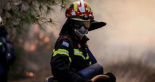Συναγερμός στην Πυροσβεστική - Φωτιές σε Κεφαλονιά και Πάργα