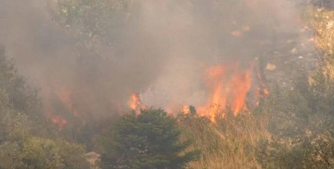 Φωτιά στη Θήβα: Ανεξέλεγκτο το μέτωπο - Κατευθύνεται στον Κορινθιακό
