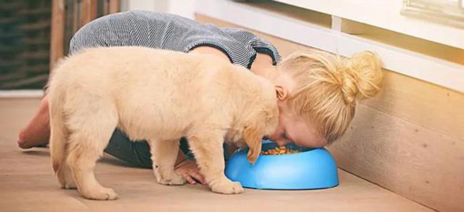 «Μαμά, κάνω τον σκύλο»: Ο αποφασιστικός ρόλος της μίμησης στην εξέλιξη των παιδιών