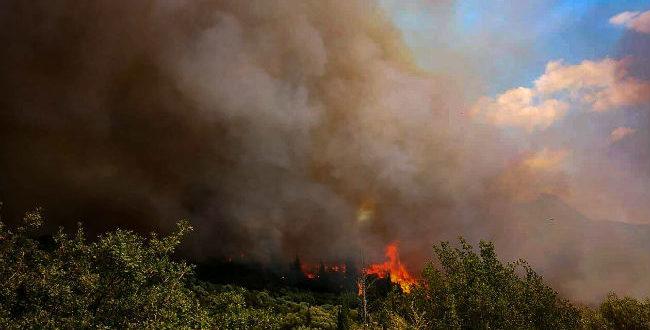 Μεγάλη φωτιά στη Φωκίδα: Επί ποδός οι Αρχές - Εν αναμονή εντολής για εκκένωση