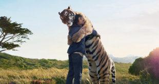 14 ιστορίες που αποδεικνύουν ότι τα ζώα έχουν ψυχή