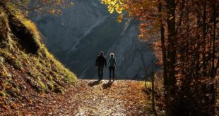 Το περπάτημα, η μνήμη, οι νοητικές δεξιότητες και η ψυχική υγεία