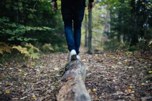 Η ζωή θα σε πάει, εκεί που είναι το καλύτερο για την ψυχή σου