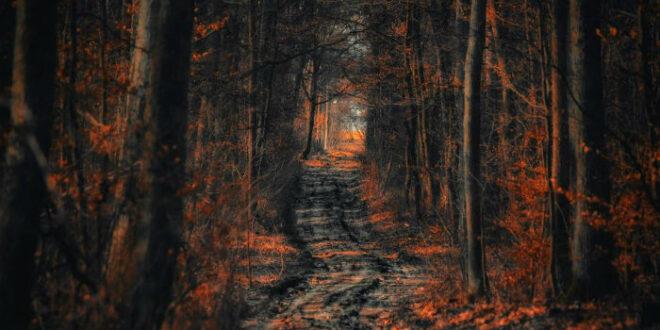 Δεν υπάρχουν αδιέξοδα, μόνο δρόμοι που δεν τους έχεις ανακαλύψει ακόμα
