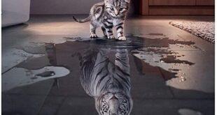 Πίστεψε στη δύναμη που έχεις μέσα σου! Μπορείς και αξίζει να το κάνεις!
