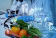 Θυρεοειδίτιδα Χασιμότο: Ποιες τροφές και συμπληρώματα διατροφής θα σε βοηθήσουν