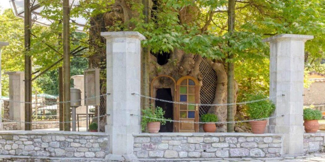 Εκκλησάκι της Παναγίας της Πλατανιώτισσας: Χτισμένο μέσα σε πλάτανο 1000 ετών!